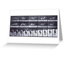 Muybridge - Photographic Study of Dogs in Motion Greeting Card
