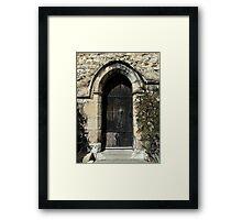 A door Framed Print