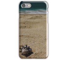 Black tipped sea shell on the beach iPhone Case/Skin