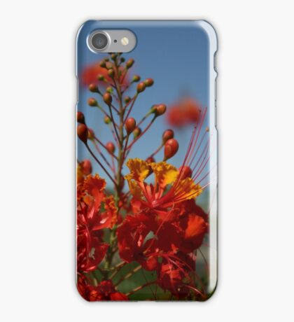 Red Mexican Bird of Paradise iPhone Case/Skin