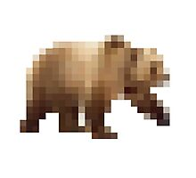 The Pixel + The Bear Photographic Print