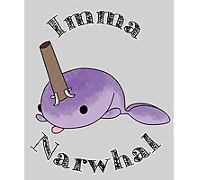 imma Narwhal Photographic Print