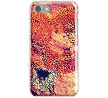 Russet Heart iPhone Case/Skin