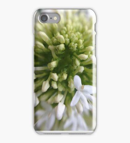 In The Garden iPhone Case/Skin