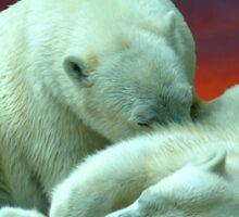 Polar Beauty Sticker