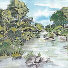uMfolozi river by Maree Clarkson