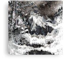 BW 017 Canvas Print