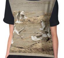 Seagulls Chiffon Top