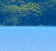 Lake Macquarie Sail Boat Sticker