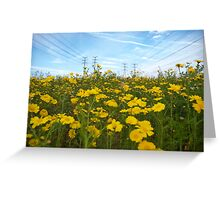 electric daisies Greeting Card