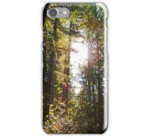 McKenzie River Sun iPhone Case/Skin