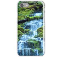 Lower Proxy Falls iPhone Case/Skin