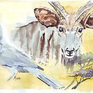 Bushveld epitome by Maree Clarkson