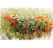 Poppy field, abstract image Photographic Print