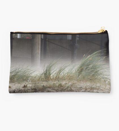 Wind through Sand Studio Pouch