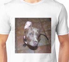 I'm All Ears - Blue Pit Bull Unisex T-Shirt