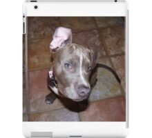 I'm All Ears - Blue Pit Bull iPad Case/Skin