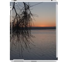 Peaceful Scene iPad Case/Skin