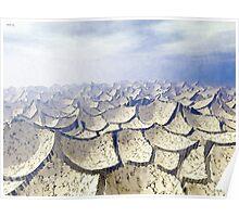Barren Arid Landscape Poster
