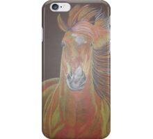 Colourful Horse iPhone Case/Skin