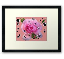 Pink Rose in Spring Framed Print