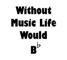 Music B Flat Photographic Print