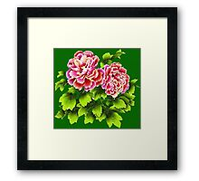 Pink Flowers in Spring Framed Print