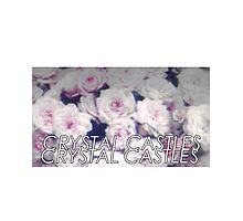 Crystal Castles washed out flowers Photographic Print