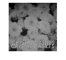 Crystal Castles Washed out flowers black and white Photographic Print