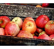 French Market Apples Photographic Print