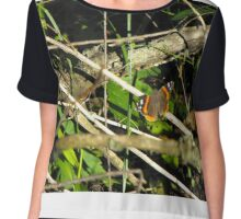 Pretty Red Admiral Butterfly Chiffon Top