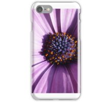 purple osteospermum Aida - closeup - macro iPhone Case/Skin