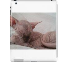 Tortie choccolate sphynx sleeping iPad Case/Skin