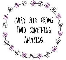 Every seed grows into something AMAZING Photographic Print