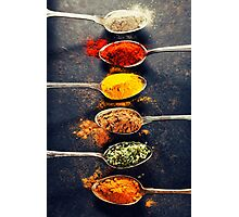 Colorful spices in metal spoons  Photographic Print