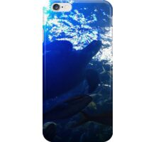 The Great Barrier iPhone Case/Skin