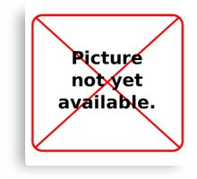 Picture not yet available Canvas Print