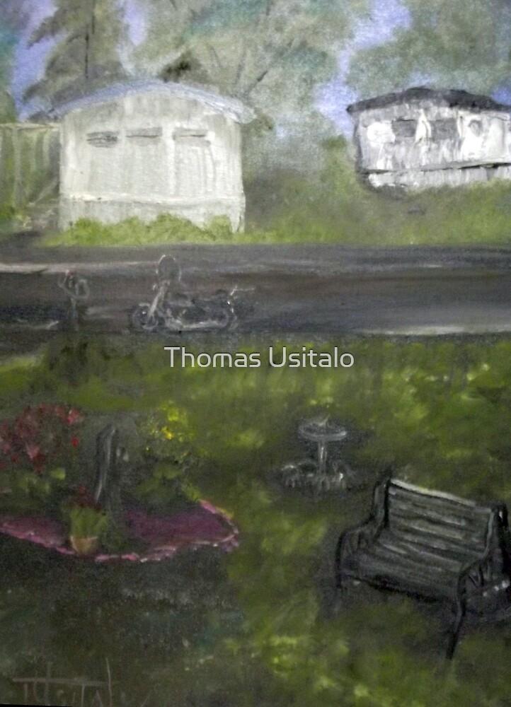 My Backyard - En plein air  by tusitalo