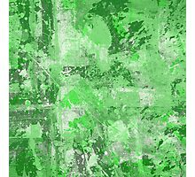 Abstract Study In Green Photographic Print