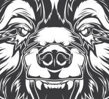 Wild bear Sticker