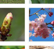Spring Collage Sticker