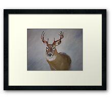 Highland Stag Framed Print