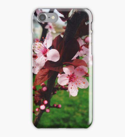 Spring Calls iPhone Case/Skin