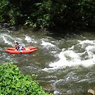 Rafting the Nantahala by JRobinWhitley