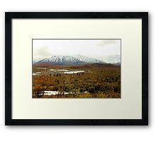 Majestic Denali Framed Print