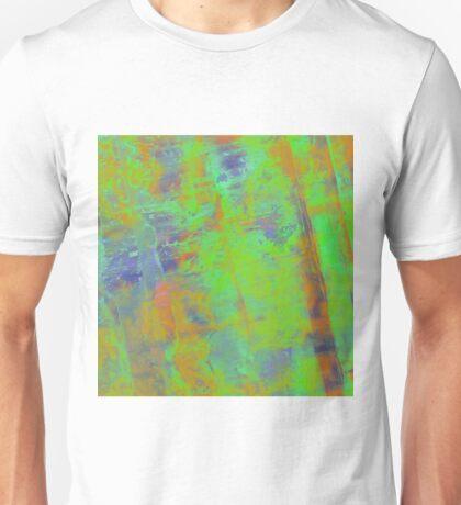 Primary Study Unisex T-Shirt
