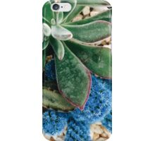Belle Bleue iPhone Case/Skin