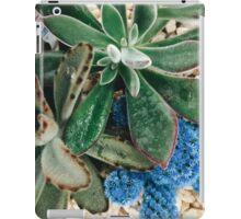 Belle Bleue iPad Case/Skin