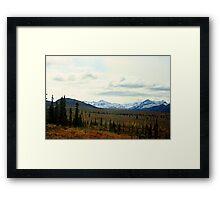 Autumn in Denali Framed Print