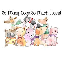 So Many Dogs So Much Love Photographic Print